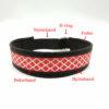 Personligt hundhalsband med dekorband